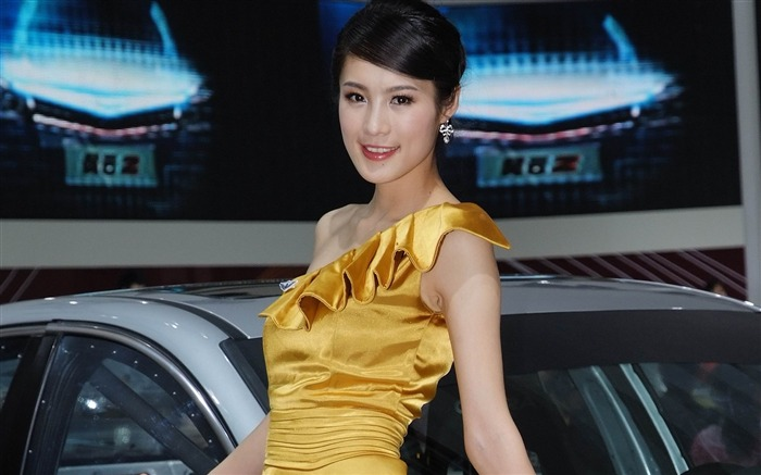 Beijing International Auto Show car models by luo wengang 02 Views:6000