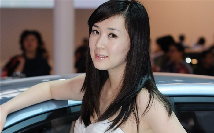 Beijing International Auto Show car models by luo wengang 12 Views:6026