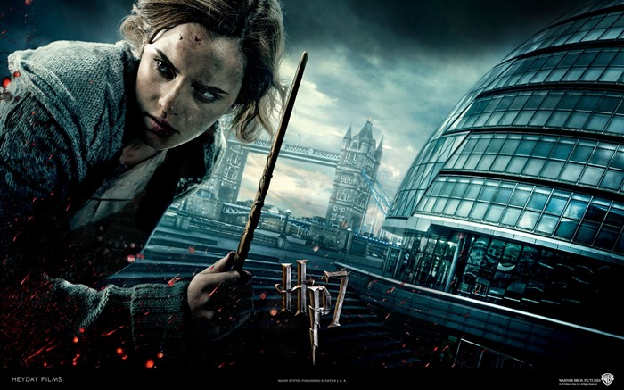 Harry Potter and the Deathly Hallows HD movie wallpaper 03 Views:5522