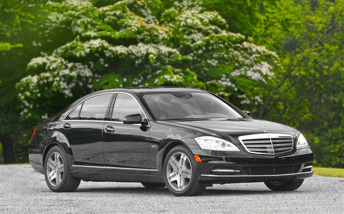 Mercedes-Benz S600-2010 wallpaper 15 Views:5083