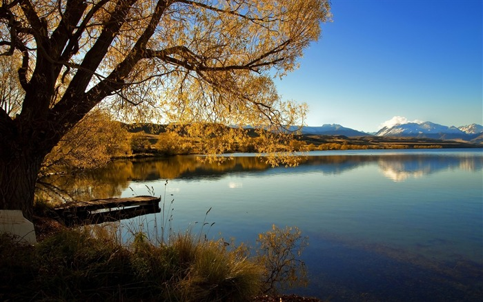 New Zealand scenic Lake-Lake Alexandrina Jolie pictures Views:5083