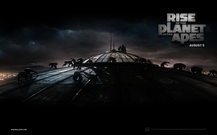 Rise of the Planet of the Apes movie wallpaper 01 Views:4210
