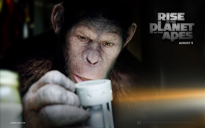 Rise of the Planet of the Apes movie wallpaper 04 Views:4333