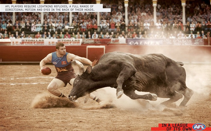 The thrill of bullfighting - extreme sports wallpaper Views:12264