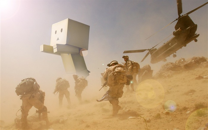 danbo wallpapers-Second Series 10 Views:19912