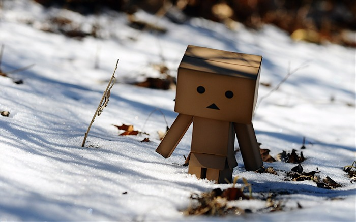 danbo wallpapers-Second Series 11 Views:11523