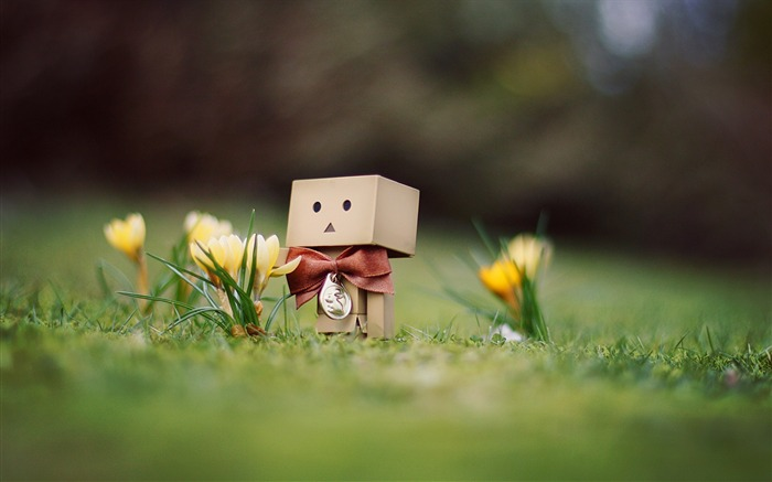 danbo wallpapers-Second Series 22 Views:11841