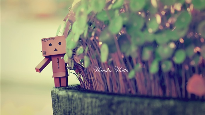 danbo wallpapers-Second Series 29 Views:4333