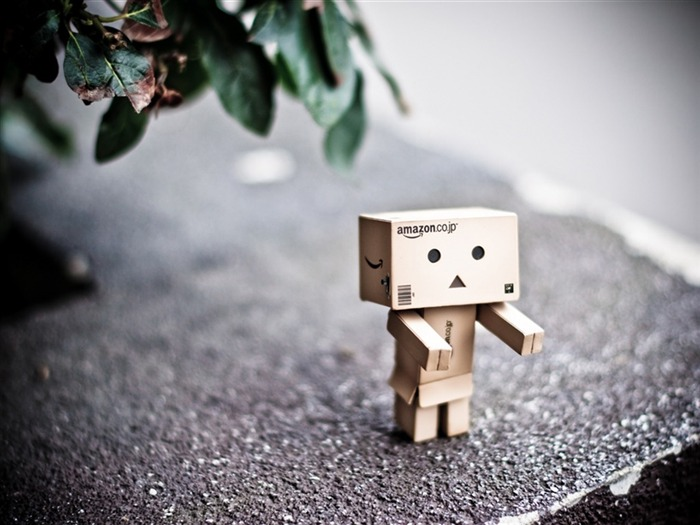 danbo wallpapers-Second Series 33 Views:1770
