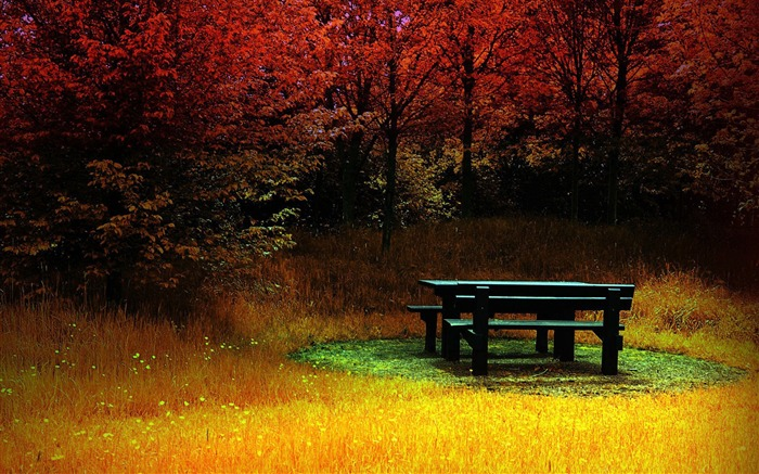 Autumn in the rest of the tables and chairs- Autumn Landscape wallpaper Views:16988