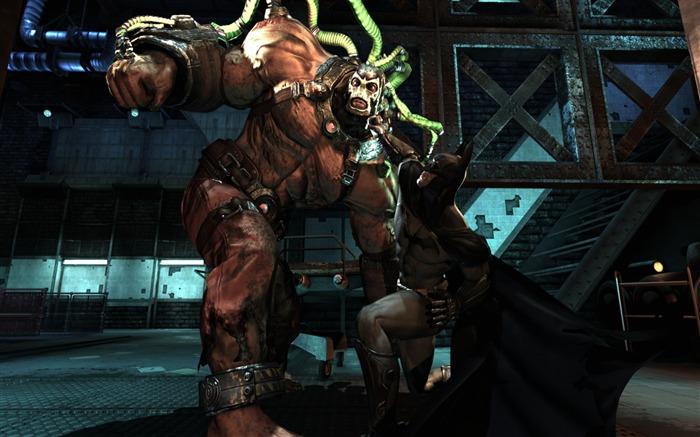 蝙蝠侠阿卡姆城batman arkham city游戏壁纸 浏览:3972