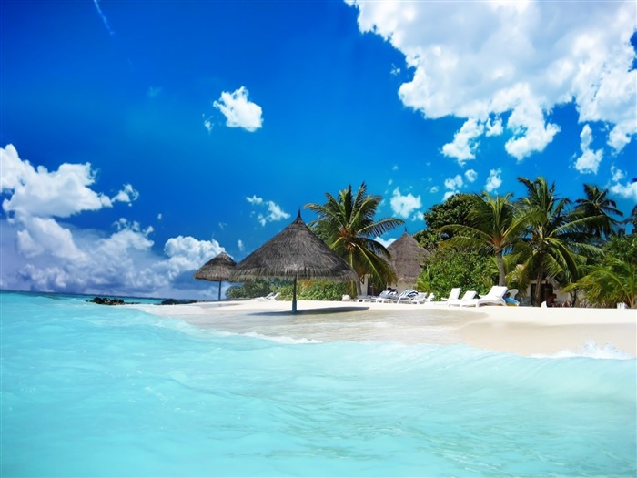 Beach Life-Nature Landscape Desktop Wallpaper Views:13238