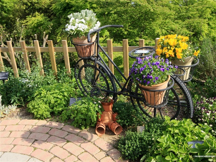 Bicycle potted Art- Japanese garden art landscape wallpaper Views:15250