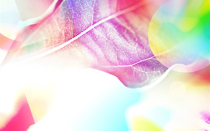 Colorful leaves under the sun-abstract design wallpaper background glare 02 Views:7694