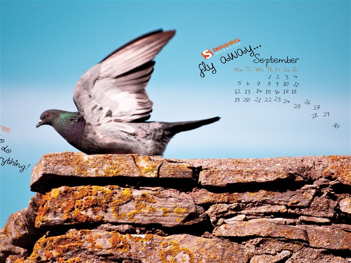 Feel Free to do everything-September 2011-Calendar Desktop Wallpaper Views:4436
