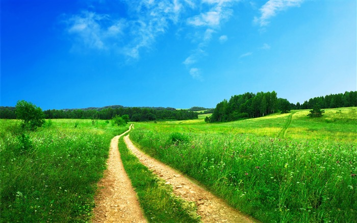 Green Scenery-landscape wallpaper selection Views:43772