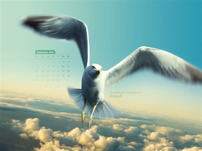 Jonathan Livingston Seagull-September 2011-Calendar Desktop Wallpaper Views:6454