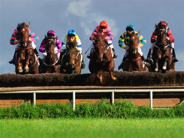 Steeplechase horse racing- SPORT Wallpaper Views:12962