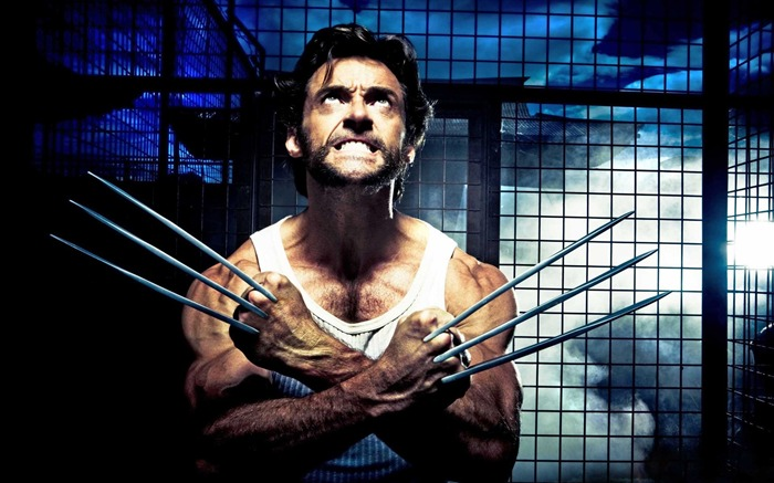 X-Men Origins Wolverine Movie Wallpapers Views:9612