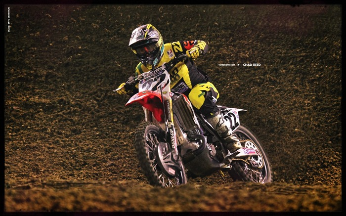 AMA Supercross fourth stop Auckland-Chad Reed Wallpaper Views:7995