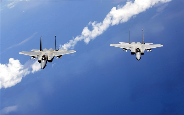 F 15 Eagles from the Air National Guard-Years of peace-military aircraft Views:3794
