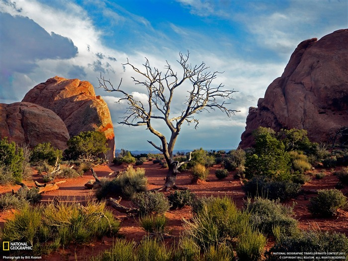 Three Arches National Park-National Geographic magazine photography Views:4706