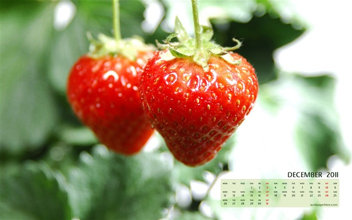 Fresh Strawberries-December 2011-Calendar Desktop Wallpaper Views:4534