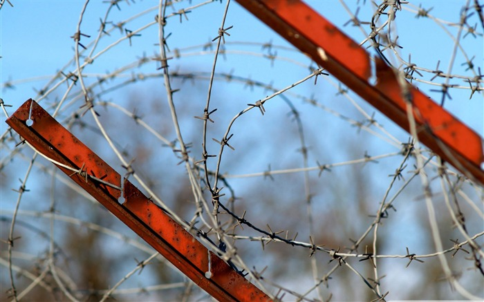 barbed wire fence-Military Desktop Wallpaper second series Views:4295