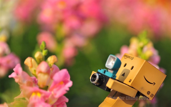 Carton with the film people Danbo Wallpaper-third series Views:20272