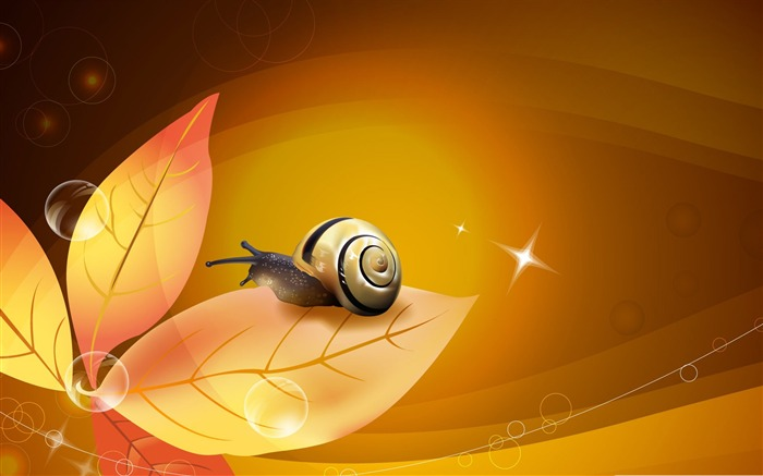snail illustration-snail desktop picture album Views:5056