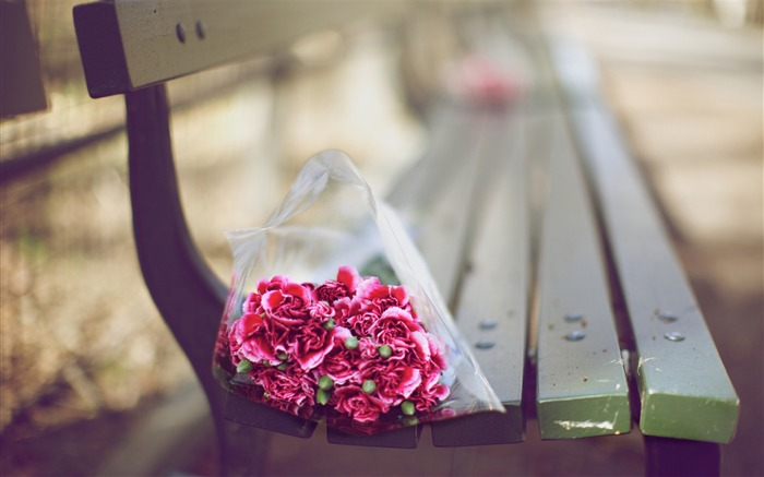 carnations bouquet on a bench-love theme desktop picture Views:6658