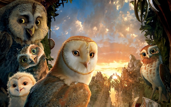 legend of the guardians the owls -Cartoon animation film Selected Wallpaper Views:5021