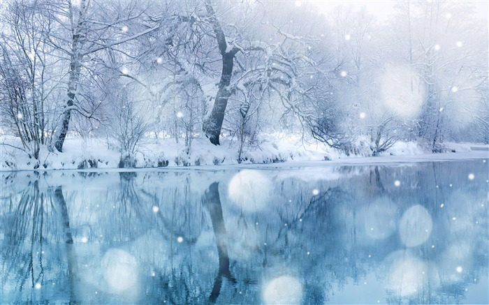 Like the romantic snow-the cold winter landscape Desktop Views:22742