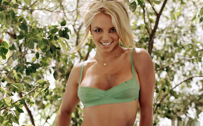 Beauty Star pop music Singer-Britney Spears Photo Wallpaper 15 Views:4380