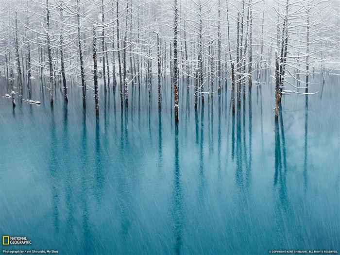 Blue Pond Hokkaido-Landscape photography theme wallpaper Views:9850