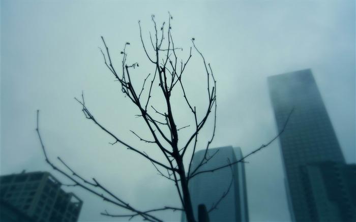 迷雾都市 都市风景摄影壁纸 壁纸预览