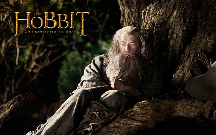 The Hobbit An Unexpected Journey Movie Wallpaper 12 Views:5781