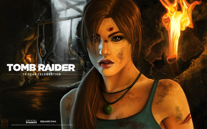 Tomb Raider 15-Year Celebration Game HD Wallpaper Views:7588