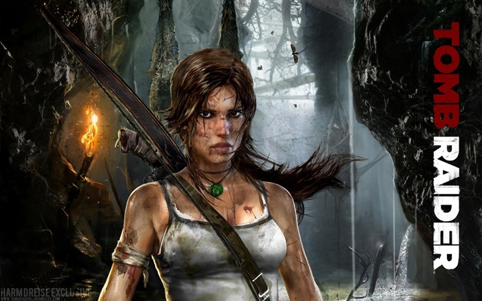 Tomb Raider 9 Game HD wallpaper Views:8056