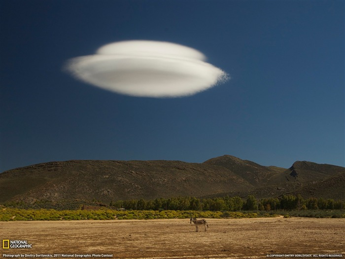 Zebra and Cloud South Africa-National Geographic magazine Views:5452