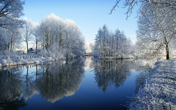 frozen trees reflected in water-winter snow theme wallpaper Views:7556