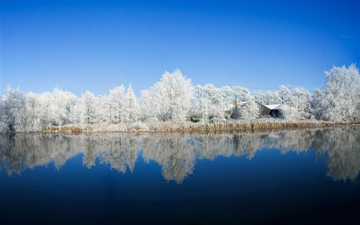 panoramic photography-winter snow theme wallpaper Views:9271
