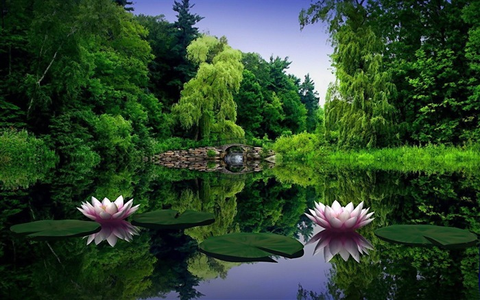 water lilies-PS creative theme design pictures Views:3963