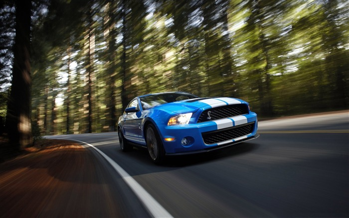 Ford Shelby GT500-Cool Cars Desktop Wallpaper Selection Views:7672