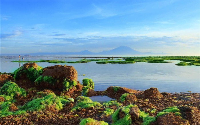 good morning sanur-The magnificent natural scenery wallpaper Views:7650