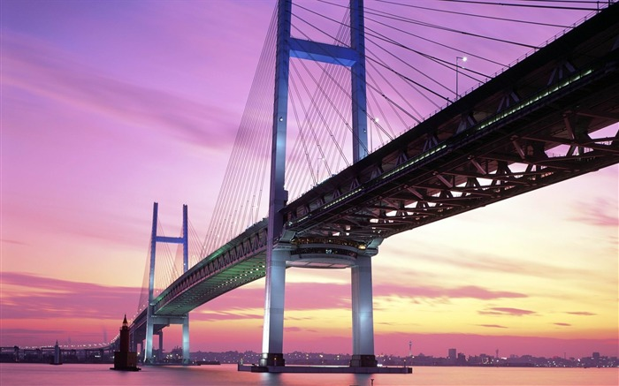Amazing Bridge-Urban landscape photography Views:6904