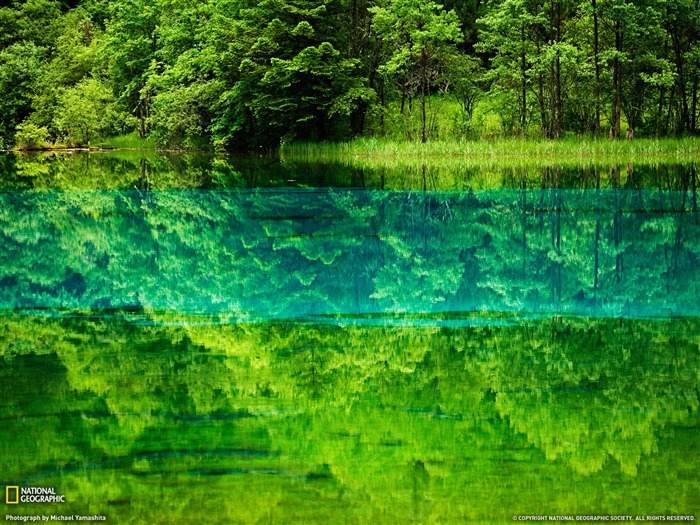 Five Flower Lake China-National Geographic 2011 Best Wallpapers Views:6349