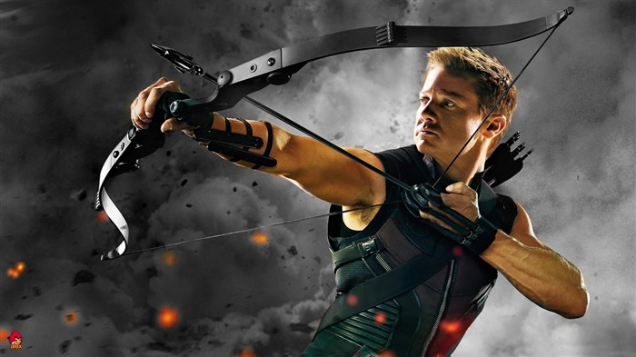 hawkeye-The Avengers 2012 HD Wallpapers Views:20176