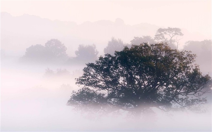 Early morning fog-Landscape photography wallpaper Views:5044