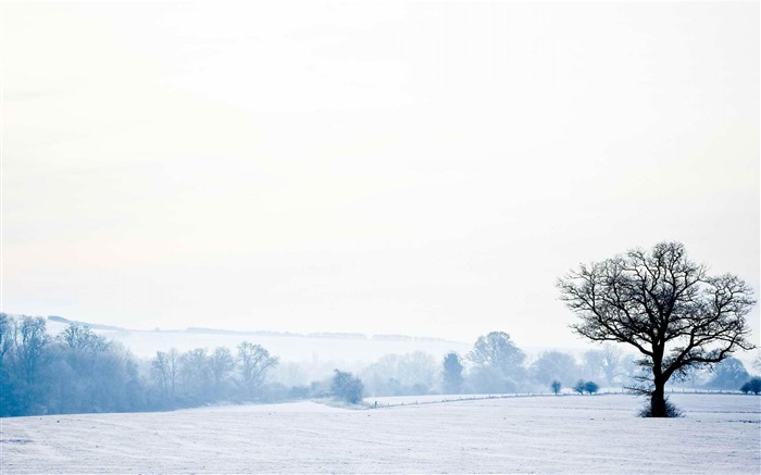 English countryside-Landscape photography wallpaper Views:7420